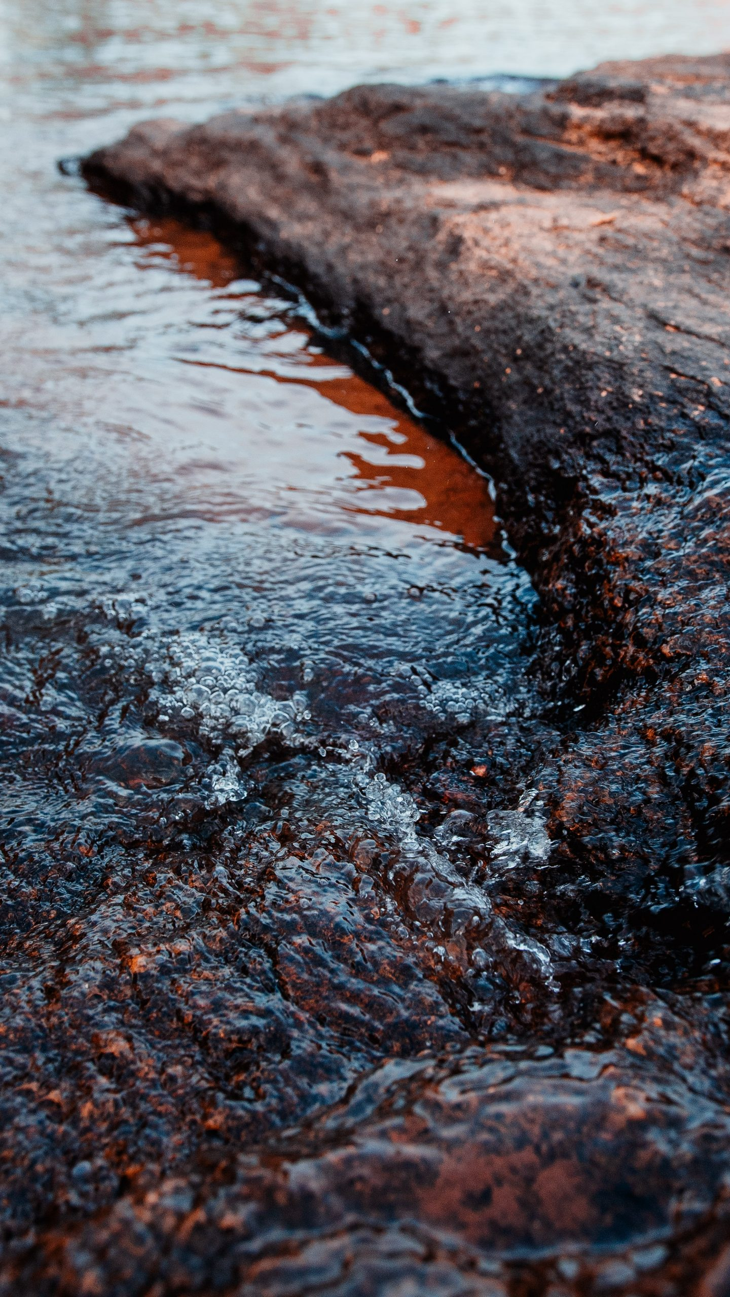 heleno kaizer zPye2CNMv3I unsplash scaled - Billion Dollars Of Environmental Damages To The Gulf Of Mexico: What Caused It?